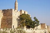 Tour de David (Jerusalem) — Photo