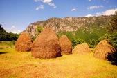 Paesaggio rurale di estate con montagna e pagliai — Foto Stock