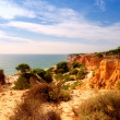 Stock Photo: Orange cliffs,pines and ocean(Algarve,Portugal)
