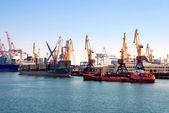 Cargo ships at shipyard — Stock Photo