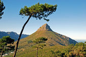 Mountain in Capetown — Stock Photo