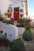 赤いドアと花を持つ古い白い家 — ストック写真