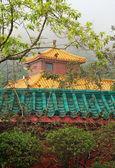 Multicolored pagoda in fog — Stock Photo