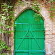 Old green wooden gate - Stock Photo