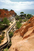Red cliffs, pine and wooden staircase(Algarve,Portugal) — Stock Photo