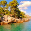 Summer seascape,Croatia - Stock Photo
