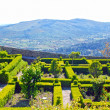 Marvao gardens(Portugal) — Stock Photo