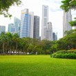 Stock Photo: Singapore Central Business District and Esplanade Park