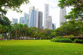 Singapore Central Business District and Esplanade Park — Stock Photo