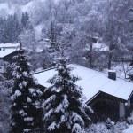 Vertical winter landscape in Tirol Alps, Austria — Stock Photo #19548903