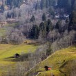 Royalty-Free Stock Photo: Early spring in the Austrian Alps.