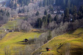 Early spring in the Austrian Alps. — Stockfoto