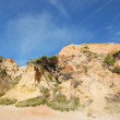 Pine and red cliffs(Algarve,Portugal) — Stock Photo