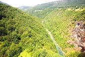 Tara river canyon ( Montenegro) — Stock Photo