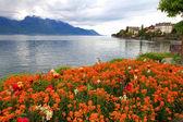Landscape with flowers and Lake Geneva, Montreux, Switzerland. — Stock Photo