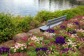 Bench and flowers at alpen lake in Montreux (Switzerland) — Stock Photo