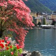Montreux and Lake Geneva, Switzerland. — Stock Photo #29220525