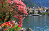 Montreux and Lake Geneva, Switzerland. — Stock Photo