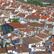 Red tile roofs — Stock Photo #31415597
