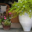 Flower pots in resort patio(Greece) — Stock Photo