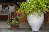Flower pots in resort patio(Greece) — Stock Photo