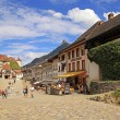 Постер, плакат: Village Gruyeres Switzerland