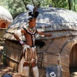 Постер, плакат: Zulu warrior man in Lesedi Cultural village South Africa