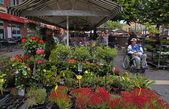 flower market, Nice, France  — Stockfoto
