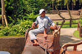 Mahout and elephant at The Elephant Safari Park, Bali — Stock Photo