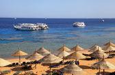 Red Sea beach, Sharm el Sheikh, Egypt — Stock Photo