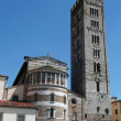 Basilica of San Frediano in Lucca — Stock Photo