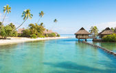 Tahiti paradise — Stock Photo