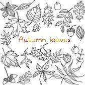 Autumn leaves doodles set — Stock Vector