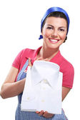 Young housewife cleaning — Stockfoto