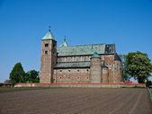 Tum, old polish collegiate romanesque church — Stock Photo