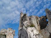 The Mirow castle — Stock Photo