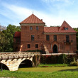 Gothic castle in Oporow, Poland — Stockfoto #13519688