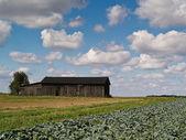 Land landschaft mit scheune, polen — Stockfoto