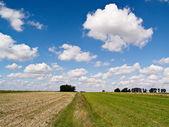 Paisaje campestre, Polonia — Foto de Stock