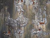 Background metallic rust texture — Stock Photo