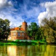 Gothic style castle located in Uniejow, Poland — Stock Photo #34335579