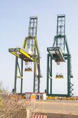Sea container crane — Stock Photo