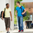 Two Students walking and talking on campus — Stock Photo #13247849
