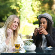 Stock Photo: Multicultural Friends Drinking Tea