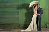 Wedding Day Portrait — Stock Photo