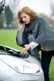 Roadside Assistance Needed — Stock Photo