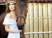 Nevěsta a koně — Stock fotografie