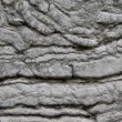 Stock Photo: Aged Wall with Warped and Rippled Stone Effect