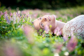 Beautiful young woman lying in meadow of flowers — Stock Photo