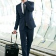 Business Travel — Stock Photo #25175759